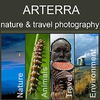 Photography by Arterra