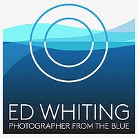 Wall art collections by Ed Whiting