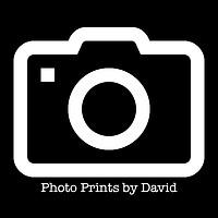 Photography by David Harker