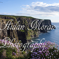 Photography by Aidan Moran