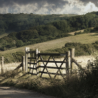 Buy canvas prints of Wroxall Gateway by Annabelle Ward