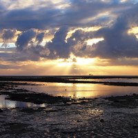 Buy canvas prints of Solent Sunrise by Annabelle Ward