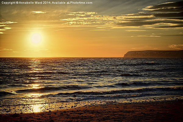 Sea Sunset Canvas print by Annabelle Ward