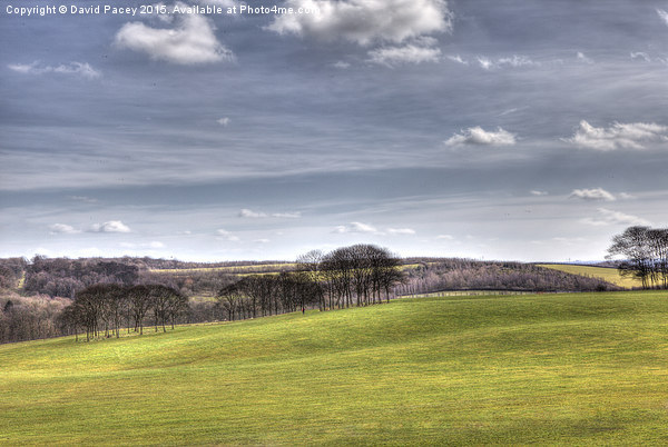 Temple Newsam (hdr) Canvas Print by David Pacey
