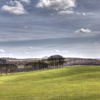 Buy canvas prints of  Temple Newsam (hdr) by David Pacey