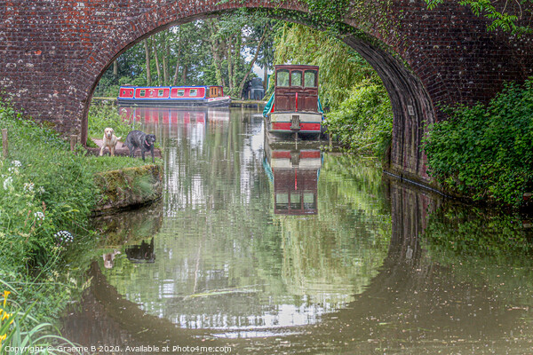 Tiverton canal Canvas Print by Graeme B