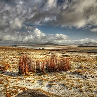 Buy canvas prints of Bodmin Moor Snow by Dave Bell