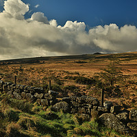 Buy canvas prints of Dartmoor wall by Dave Bell