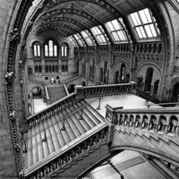 Buy canvas prints of London, The Escher View by Martin Williams
