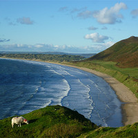 Buy canvas prints of Rhossili Bay: Autumn View by Mark Campion