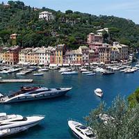 Buy canvas prints of Italy_Portofino by Donatella Piccone