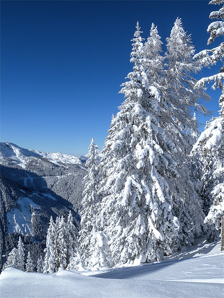 Mountain Snowscape Canvas print by Mark Llewellyn