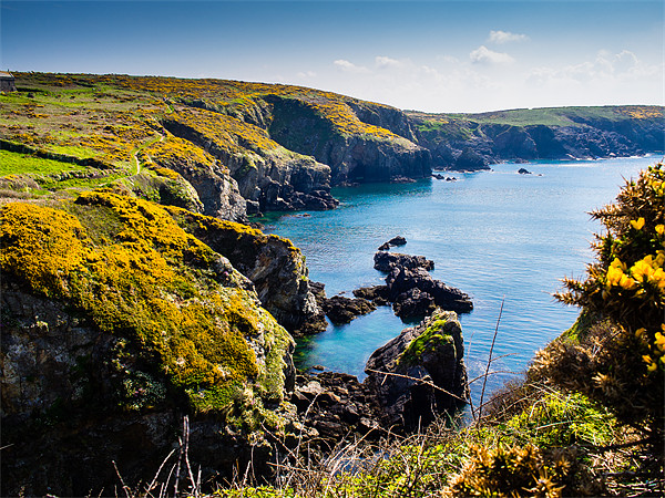 St Nons Bay Pembrokeshire Canvas Print by Mark Llewellyn