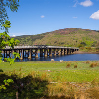 Buy canvas prints of Penmaenpool Toll Bridge by Mark Llewellyn