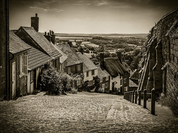 Gold Hill Shaftesbury Canvas print by Mark Llewellyn