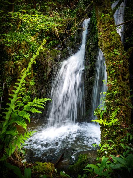 Aberfforest Waterfall, Pembrokeshire, Wales, UK Framed Mounted Print by Mark Llewellyn