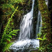 Buy canvas prints of Aberfforest Waterfall, Pembrokeshire, Wales, UK by Mark Llewellyn