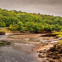 Buy canvas prints of Bear River by Mark Llewellyn