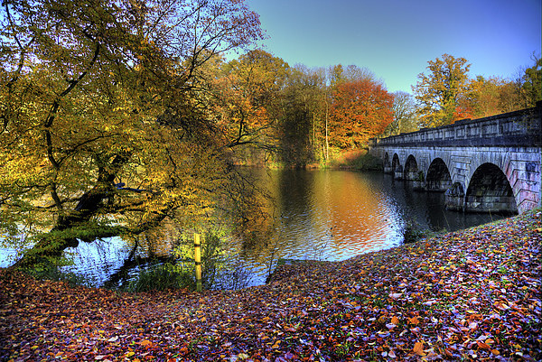 Virginia Water Lake in Autumn Canvas print by Simon West
