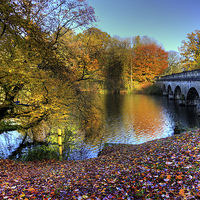 Buy canvas prints of Virginia Water Lake in Autumn by Simon West