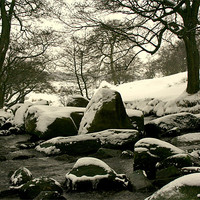Buy canvas prints of Frozen River by carl wood