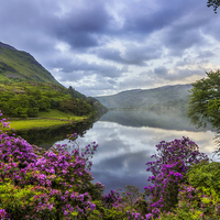 Buy canvas prints of Llyn Gwynant  by Ian Mitchell