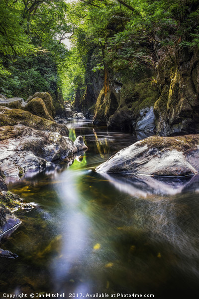 Summer At Fairy Glen  Canvas Print by Ian Mitchell