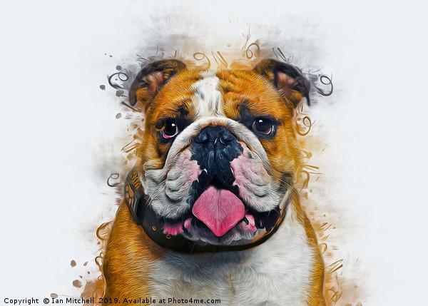 Bulldog Art Canvas print by Ian Mitchell
