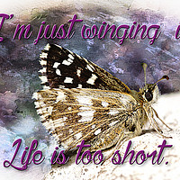 Buy canvas prints of Life it too short by J C