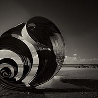 Buy canvas prints of Mary's Shell Black & White  by Debbie Bowers