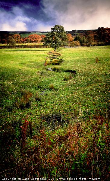 Autumn Landscape Framed Mounted Print by Cass Castagnoli