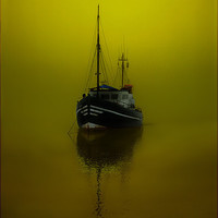 Buy canvas prints of Alone by Nigel Hamer