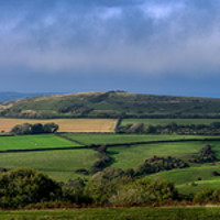 Buy canvas prints of Ventnor Down Panarama by Wight Landscapes