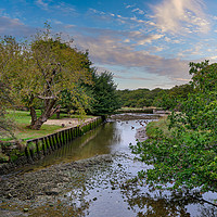 Buy canvas prints of Shalfleet Below The Mill by Wight Landscapes
