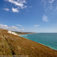 Buy canvas prints of Path To Compton Bay by Wight Landscapes