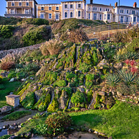 Buy canvas prints of Ventnor Cascade Gardens by Wight Landscapes