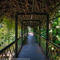Buy canvas prints of Bridge Over The Dell by Wight Landscapes
