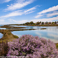 Buy canvas prints of Pedras d'El Rei Santa Luzia Algarve Portugal by Wight Landscapes