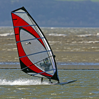 Buy canvas prints of Windsurfer by Paul  Scoullar Wildlife