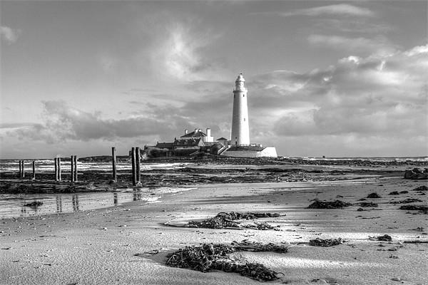 St Marys Lighthouse Canvas print by Tom Hibberd