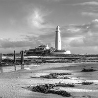 Buy canvas prints of St Marys Lighthouse by Tom Hibberd