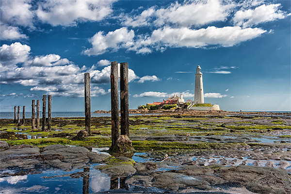 St Marys Lighthouse, Northumberland Canvas print by Tom Hibberd