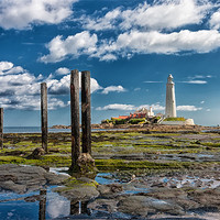 Buy canvas prints of St Marys Lighthouse, Northumberland by Tom Hibberd