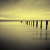 Buy canvas prints of  Golden tranquility by Tom Hibberd