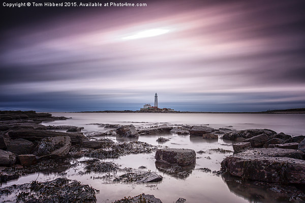 Streaking past St Mary's Lighthouse Canvas print by Tom Hibberd