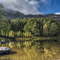 Buy canvas prints of Blea Tarn, Lake District by Mary Fletcher