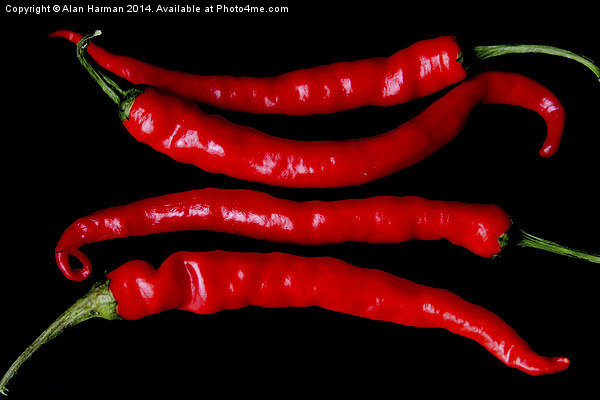 Four Red Chilies Canvas Print by Alan Harman