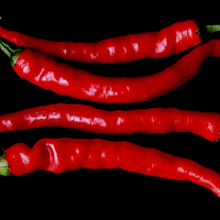 Buy canvas prints of Four Red Chilies by Alan Harman
