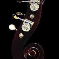 Buy canvas prints of Bass 2 by Alan Harman