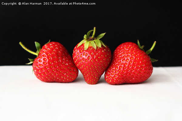 Strawberries On Black Over White Canvas Print by Alan Harman